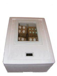 Inkubator - Incubator - Brutkasten - Brutmaschine - Brutapparat - Brüter