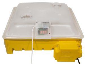 Campo24 GM Brutapparat, Incubator, Flächenbrüter für bis zu 60 Eier Inkubator