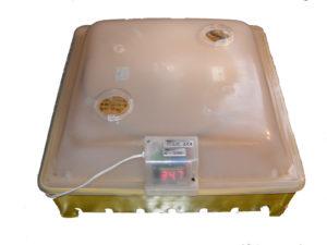 G Inkubator - Brutkasten - Brutmaschine - Brutapparat - Brüter - Couveuse - Flächenbrüter